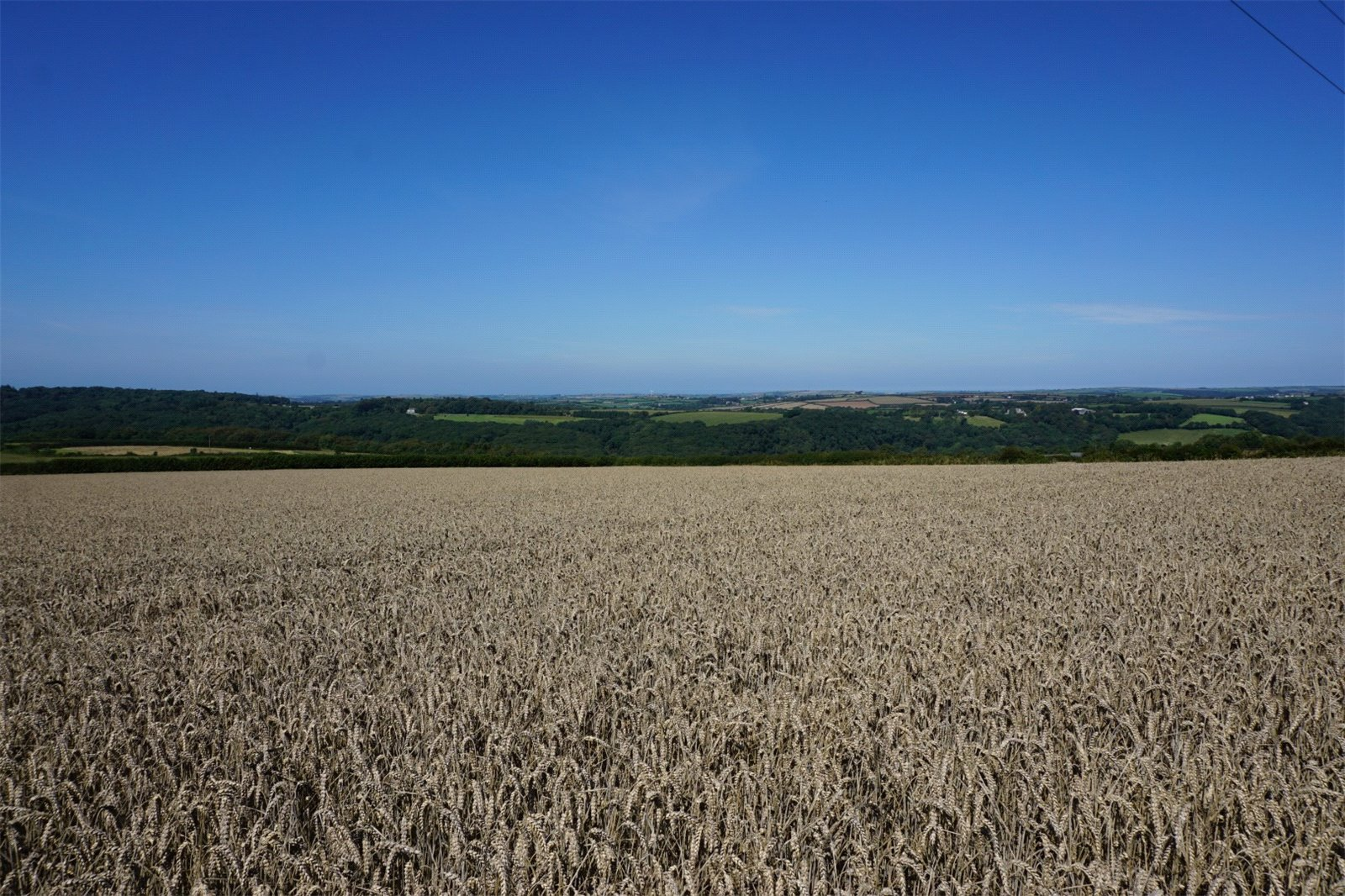Helland Barton Farm land