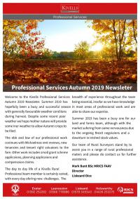 Professional Services Autumn 2019 Newsletter
