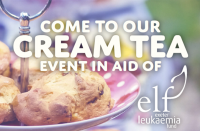 Kivells estate agent cream tea ELF event Exeter Leukemia Fund