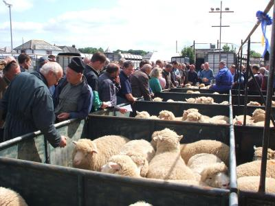 Liskeard Market, Cornwall
