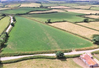 Green, bordered corner field of jenns Farm Bradworthy for sale with Kivells