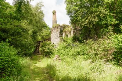 Minehouse Farm, Herodsfoot Mine - Herodsfoot Mine crusher house and chimney hidden within trees and greenery